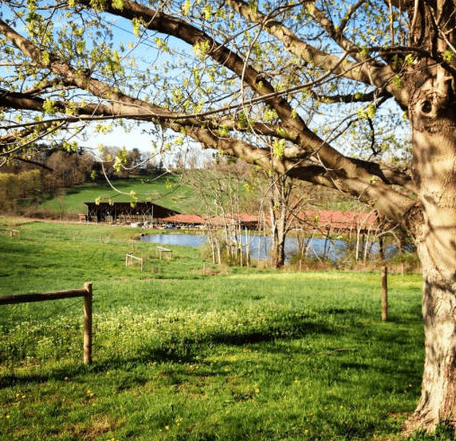 Farm3